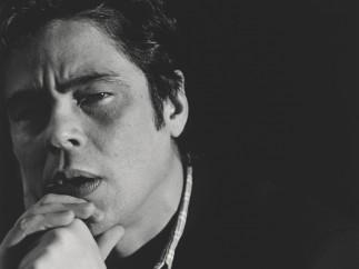 Benicio del Toro, 2008