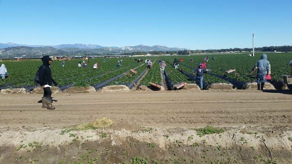 La sequía en California ahoga a los inmigrantes: ya se ha
