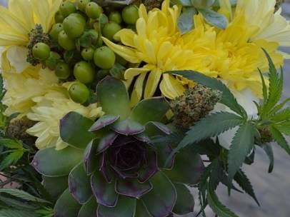 Flores con marihuana