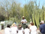 Abre sus puertas otra vez el Organ Pipe Cactus National Monument