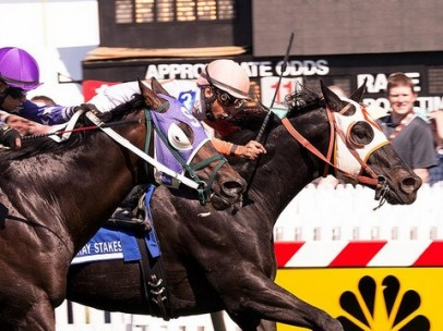 Carrera Preakness Stakes