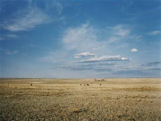 Landscape, Near Santa Fe, New Mexico