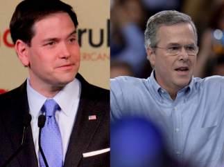 Rubio y Bush