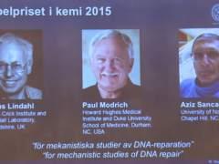Tres científicos ganan el Nobel de Química por estudio sobre el ADN
